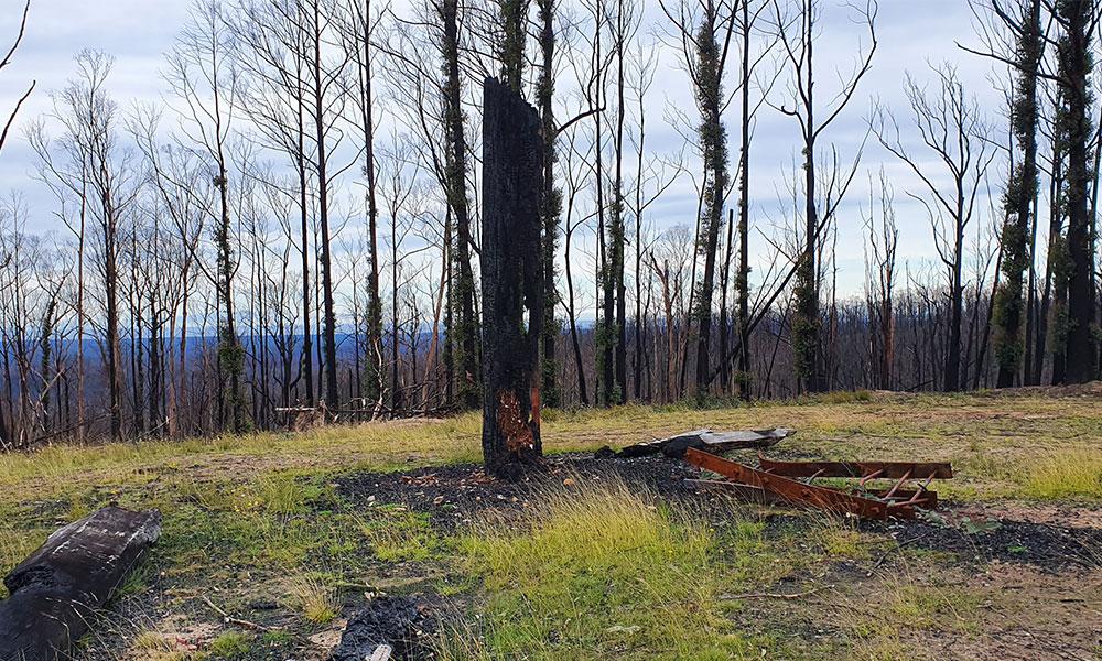 Stringers Knob Fire Spotting Towe